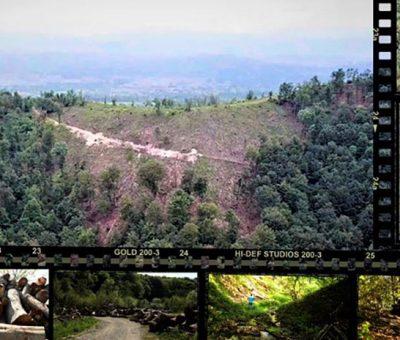krađa šume na području Banjaluke